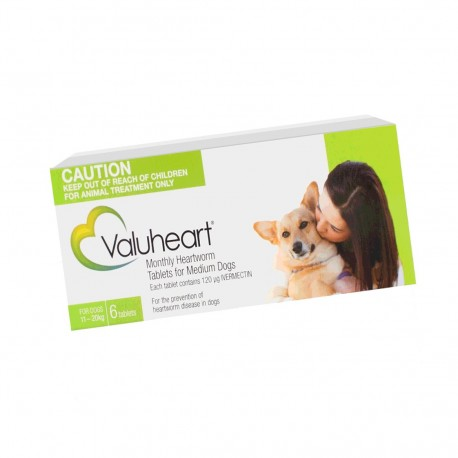 Valuheart Medium Dog Green 6Tab