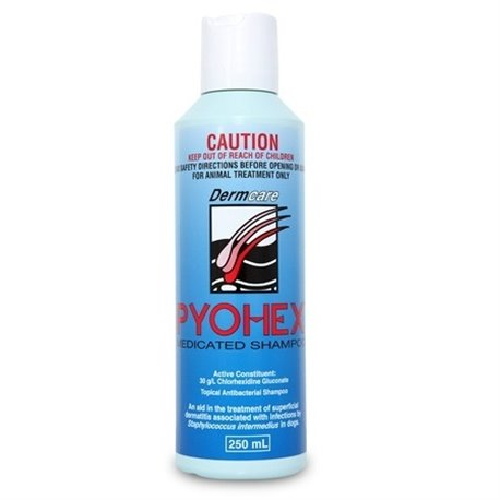 Pyohex Medicated Shampoo