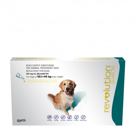 Revolution Green Extra Large Dog 20.1-40kg