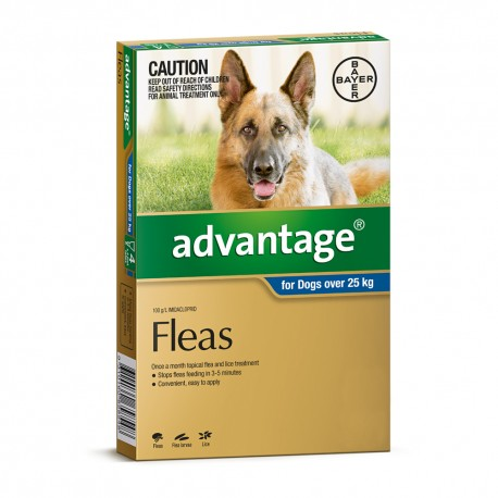 Advantage Extra Large Dog 25-50KG