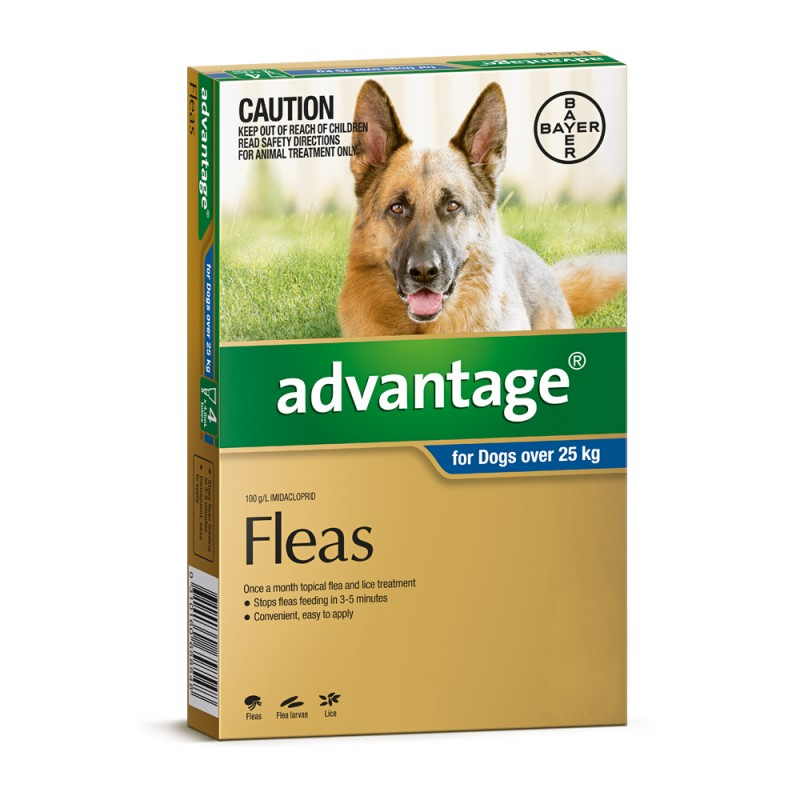 Advantage Extra Large Dog  Pack