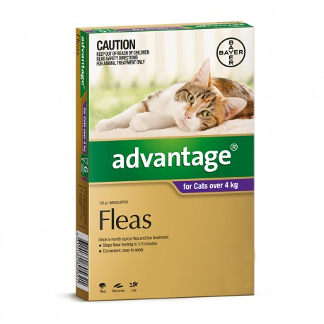 Advantage Large Cat over 4KG
