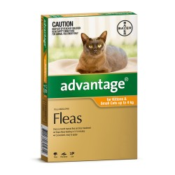 Advantage Small Cat 0-4KG (Orange)