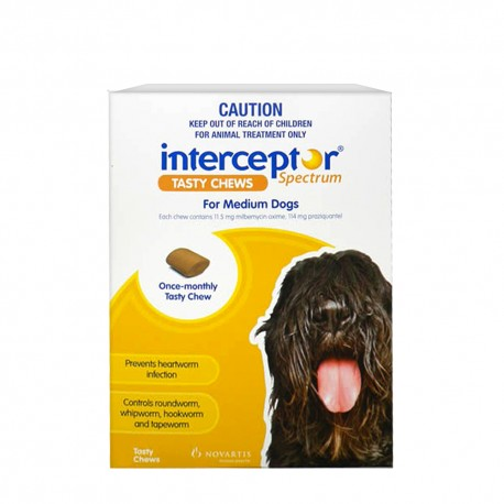 Interceptor Medium 11-22KG Yellow