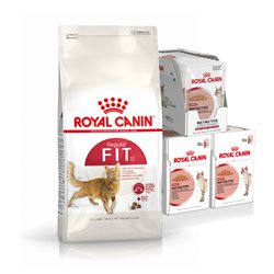 Royal Canin Feline Fit Dry (4kg) & Wet (36 Pouch) Bundle