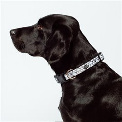 Mog & Bone Mocca Diamond Neoprene Dog Collar