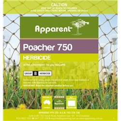 Apparent Poacher 750 1kgs (Imazapyr) Herbicide