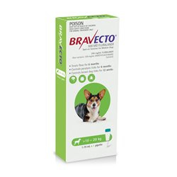 Bravecto For Dogs Spot On 10-20kg Green Single Pack