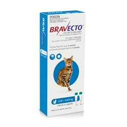 Bravecto For Cats Blue 2.8-6.25kg Flea & Tick Treatment 2 Pippet Pack