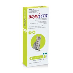 Bravecto For Cats Green 1.2-2.8kg Flea & Tick Treatment 2 Pippet Pack