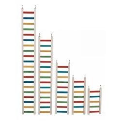 Paradise Parrot Ladder