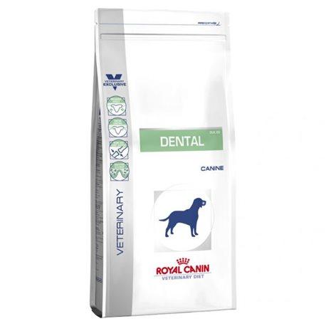 Royal Canin Vet Diet Dog Food Dental