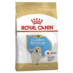 Royal Canin Golden Retriever Junior (Puppy)
