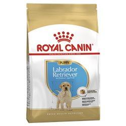 Royal Canin Labrador Puppy Dry Dog Food