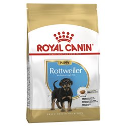 Royal Canin Rottweiler Puppy Junior Dry Food 12kg