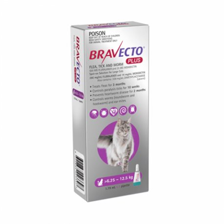 Bravecto Plus For Cats Purple 6.25 - 12.5kg Flea, Tick and Worm Treatment 1 Pipette Pack