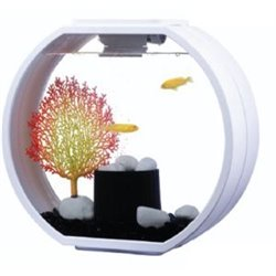 Blue Planet Aquarium Deco-O 10L White