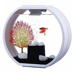 Blue Planet Aquarium Deco-O 20L White