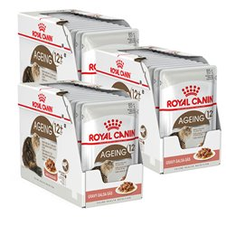 Royal Canin Ageing +12 in Gravy x 36 Pouches