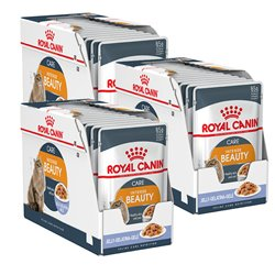 Royal Canin Intense Beauty Adult in Jelly x 36 pouches