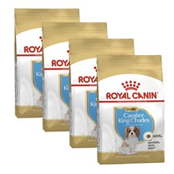 Royal Canin Cavalier King Charles Puppy 6kg (4x1.5kg)