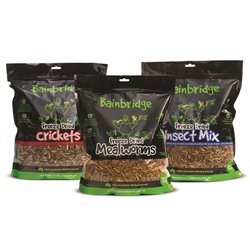 Bainbridge Freeze Dried Crickets 250g