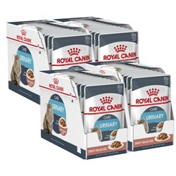 Royal Canin Urinary Care in Gravy x 48 Pouches