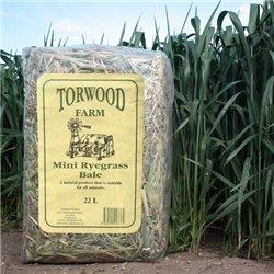 Torwood Farm Mini Rye Grass Bale 22L