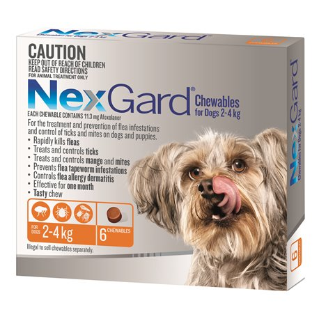 NexGard for Very Small Dogs 2-4kg Orange