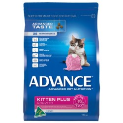 ADVANCE - Kitten - Chicken