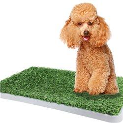 Green Dog Training Toilet