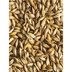 Avigrain Barley 20kg (WAREHOUSE PICK UP ONLY)