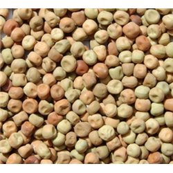 Avigrain Dun Peas 20kg (WAREHOUSE PICK UP ONLY)