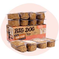Big Dog Tasmanian Salmon Raw Dog Food (12x250g/3kg)