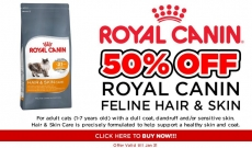 How To Improve Your Cats Hair & Skin!